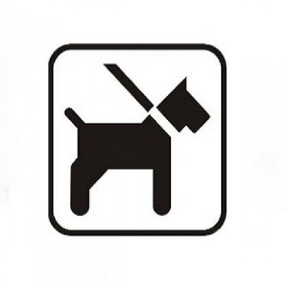 Piktogramm Hund